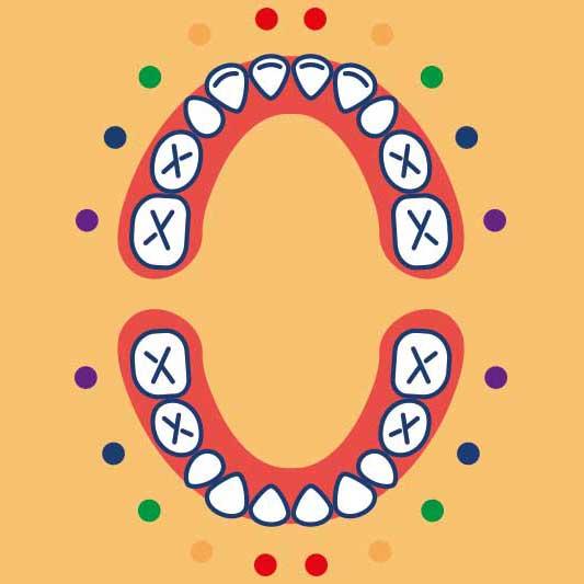 Com'è la sequenza fisiologica di eruzione dei denti?